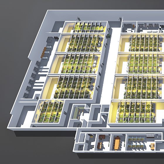 An architectural rendering 3D floorplan of a licenced producer facility created by SMDVR
