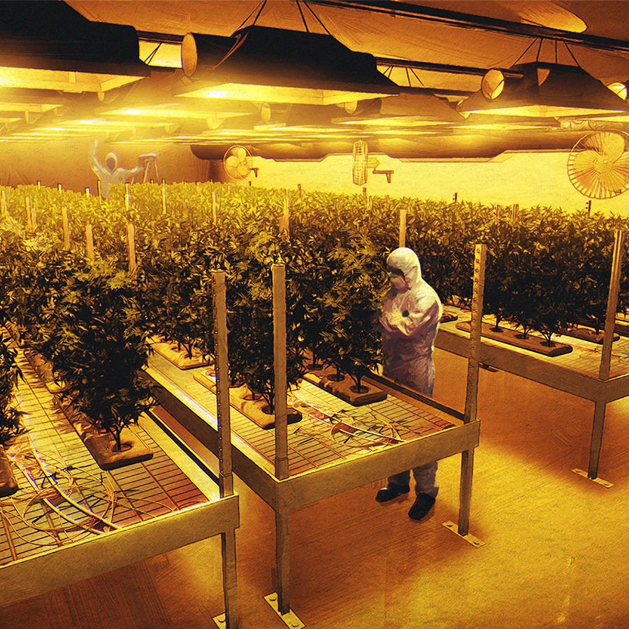 An architectural rendering inside of a licenced producer grow room created by SMDVR